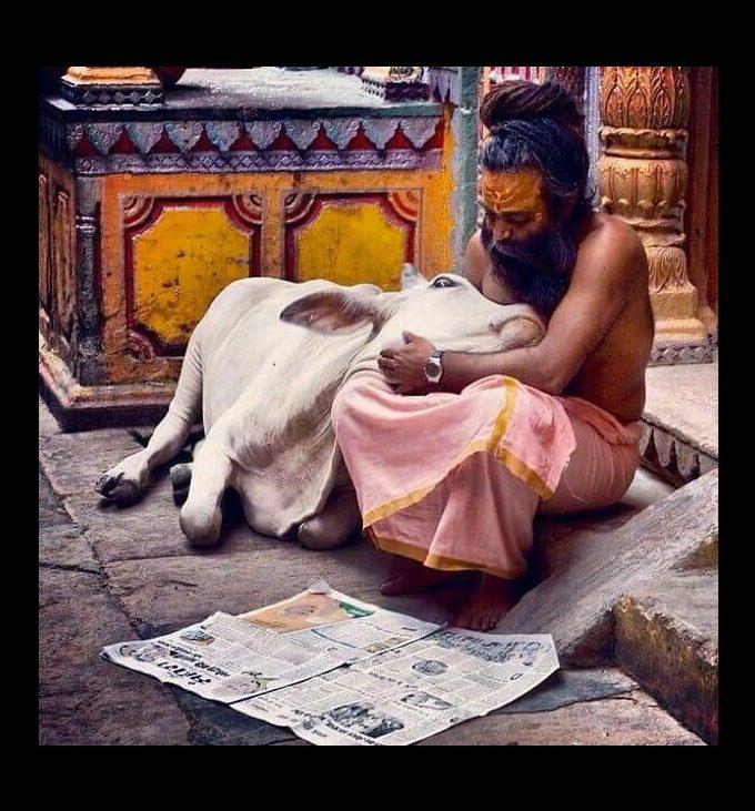 Compassionate Veganism